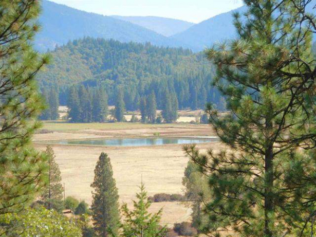 Serene Setting in Greenville on 12.63 Acres…137 Williams Valley Rd. Greenville CA  95947