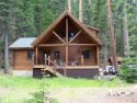 Wonderful Cabin in the Woods…….19604 Forest Summit Loop #20